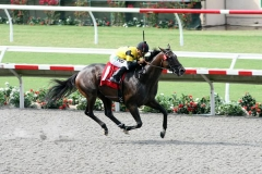 Rock Me Baby Winning California Dreamin Stakes at Del Mar