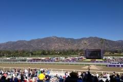 Perfect Day at Santa Anita